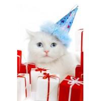 """Мнямс """"С новым годом от """"Мнямс"""", набор для стерилизованных кошек"""